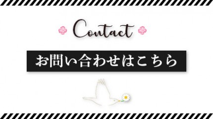 contact-simple